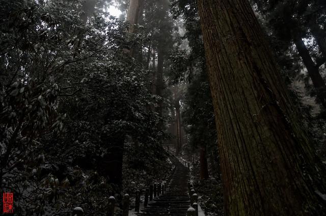 「無音」 室生寺 - 奈良