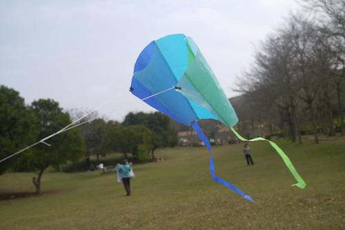 口袋風箏 (11)