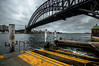 057*/365 :: Hello Sydney Harbour Bridge