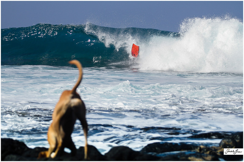 30-surfing-south-swell-kona-hawaii.jpg