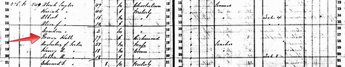 1865 RI State Census Crop by midgefrazel