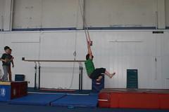 floor gymnastics(0.0), artistic gymnastics(0.0), trampolining(0.0), sports(1.0), gymnastics(1.0), rings(1.0),