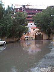 flood, disaster,