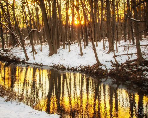 trees creek sunset warwick water landcape newyork rural conditions snow