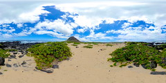 The Ka'ena Point Natural Area Reserve, O'ahu, Hawai'i - a 360° Equirectangular VR