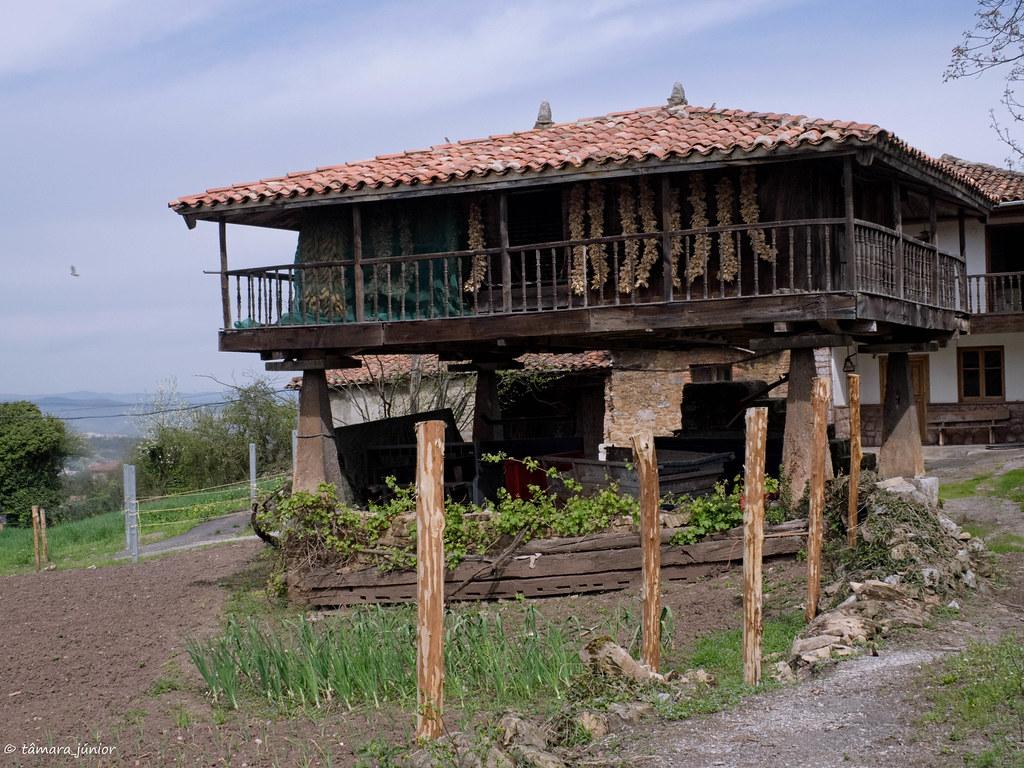 30.- Camino del Salvador-8ª etapa (278)