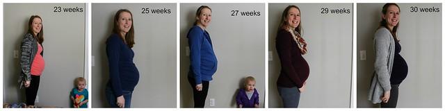 collage 23-30 weeks