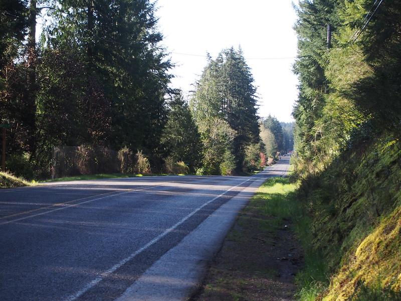 Peacock Hill Avenue