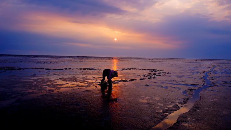 靠海的人生