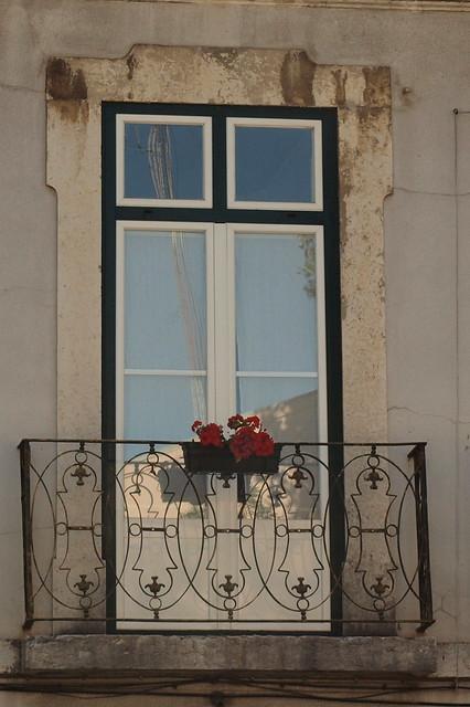 Sardinheiras na varanda