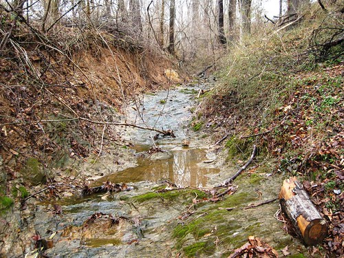 Image of Germantown Park Stream