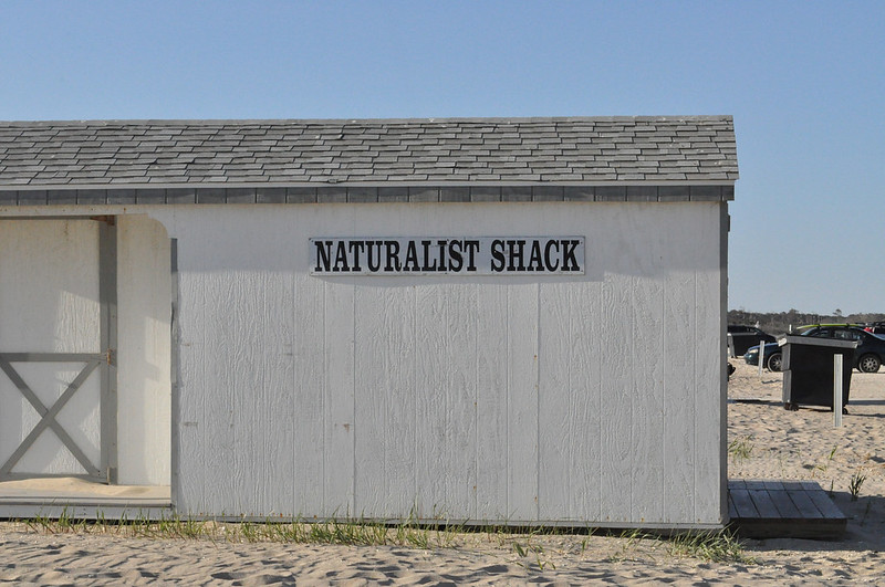 Naturalist Shack