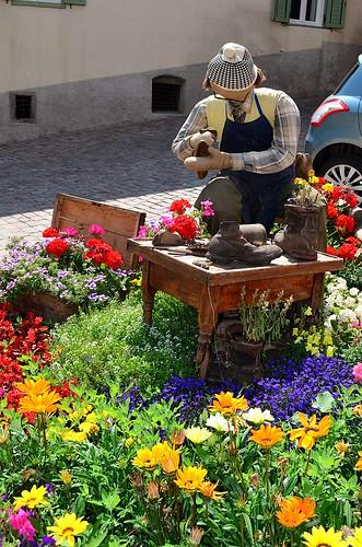 Flowers at Ossana