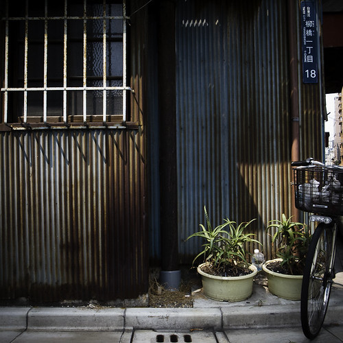 Two Potted Aloe Plants with Bicycle, Asakusabashi