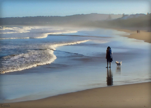 sea people dog beach canon walking southafrica person bay coast simplicity dslr dogwalking