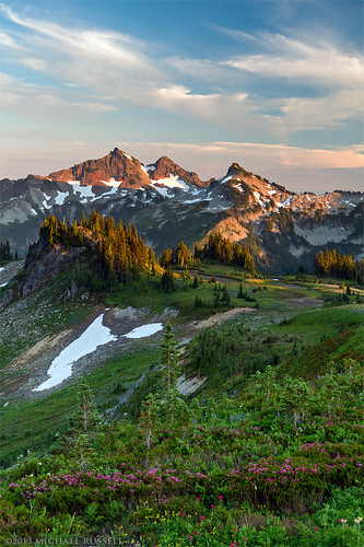 The Tatoosh Range from Mazama Ridge