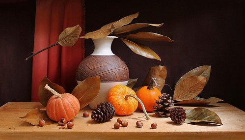 november autumn red stilllife food orange brown plant color art texture crimson leaves yellow sepia composition canon pumpkin golden stem beige branch pattern availablelight curtain nuts dry stilleben fringe fantasy vase imagination esther drape pinecone bounty hazelnut tabletop russet bodegon naturemorte artisticphotography naturamorta spektor naturezamorta coth creativephotography artdigital autumnseason creamics slicesoftime artofimages exoticimage estherspektor