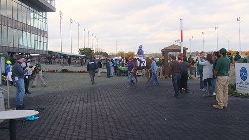 Native Waive With Edwin Rivera Up Are The Last Duo To Enter The Original Winner's Circle
