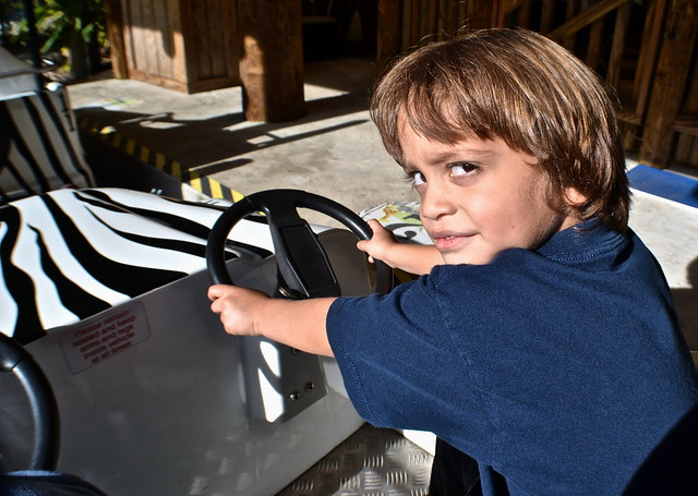 Legoland, Florida - safari car ride