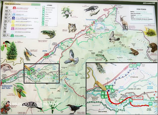 Mapa de Ruta 2013
