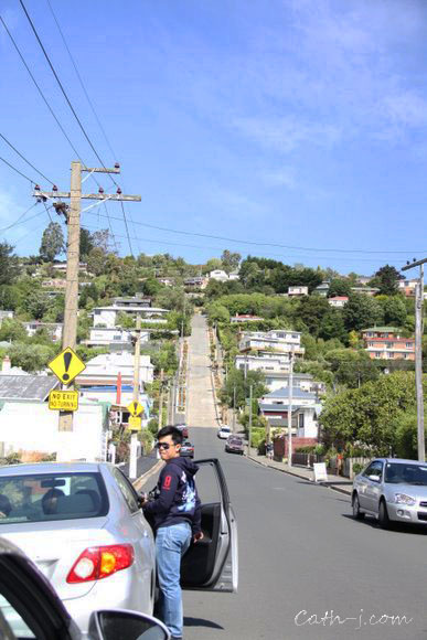 Larnach-Castle-Dunedin-NZ_44