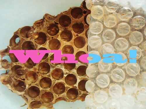 Choco-honeycomb