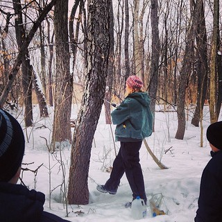 This morning I got my #TashaTudor on and we learned all about maple syrup production. I'm kinda excited because we have 3 maples in our yard that would qualify. Now, if it would only get warm enough!