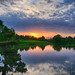 Sunset-Chicago Botanic Gardens-1 by Bob Lussier Photography