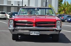coupã©(0.0), automobile(1.0), automotive exterior(1.0), vehicle(1.0), full-size car(1.0), bumper(1.0), antique car(1.0), sedan(1.0), classic car(1.0), land vehicle(1.0), muscle car(1.0), pontiac gto(1.0), motor vehicle(1.0),