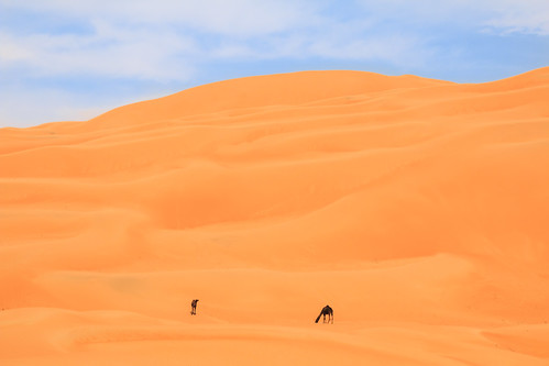 desert dune abudhabi sanddune liwa liwaoasis emptyquarter rubalkhali مرعب الربعالخالي تلمرعب 20140127img1425