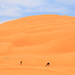 Abu Dhabi, Mureeb sand dune by Frans.Sellies