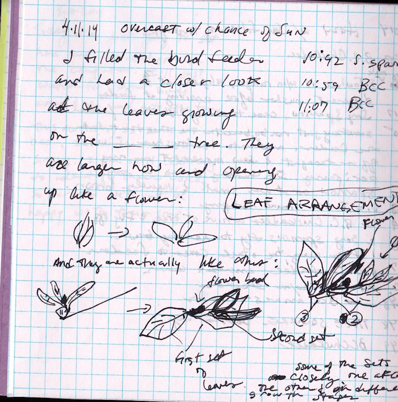fake journal april 11 2014