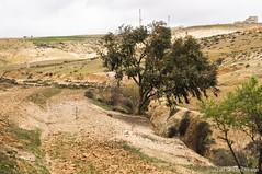 Excursión por Dar Kebdani