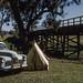 Camping near Dunedoo, 1954 by NettyA