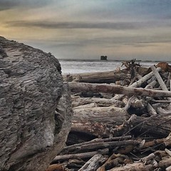 The mouth of the Hoh River with Middle Rock in the background. #adventureinspired #roamtheplanet #awesomeearth #earthfocus #wanderlust #pnwonderland #pnwspotlight #theelys #olympicnationalpark