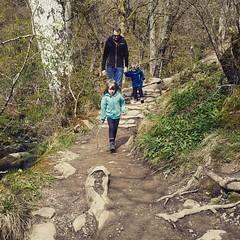 #family #walk #nationaltrust