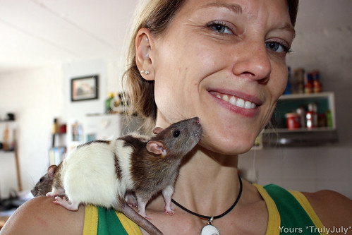 Do you need someone to look after your ratties? Then get in touch: TrulyJuly@web.de. :)