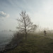 Spring Humber Bay by Scapevision