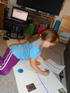 Timeline- Big Bang to Now (5)