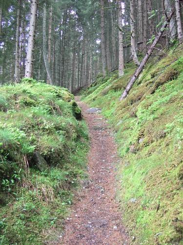Bucolic trail