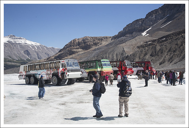 Columbia Icefield 5