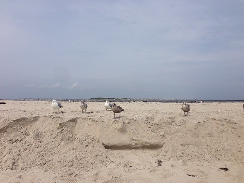 Long Beach Island-46