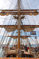carrack(0.0), manila galleon(0.0), cog(0.0), brigantine(0.0), sail(1.0), sailboat(1.0), sailing ship(1.0), vehicle(1.0), ship(1.0), full-rigged ship(1.0), mast(1.0), tall ship(1.0), watercraft(1.0), boat(1.0), galleon(1.0),