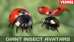 GiantInsectAvatars_Batch01_Ladybird_2013-09-25_684x384