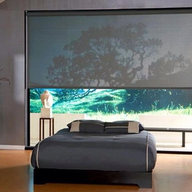 Motorized Roller Shades Nyc Alluring Window Nyc Is
