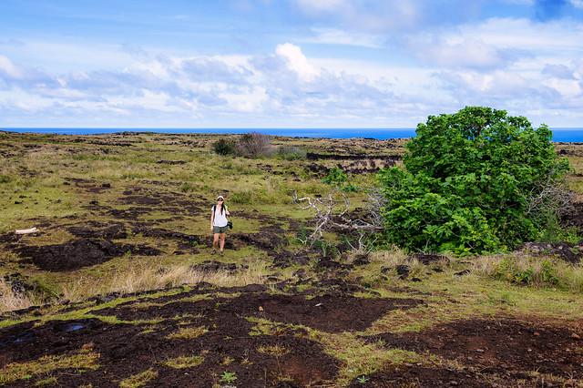Easter Island-108