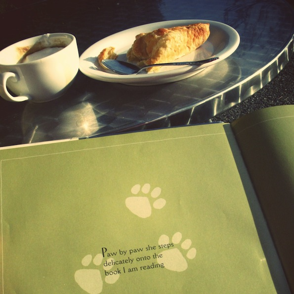 november dessert and cafe