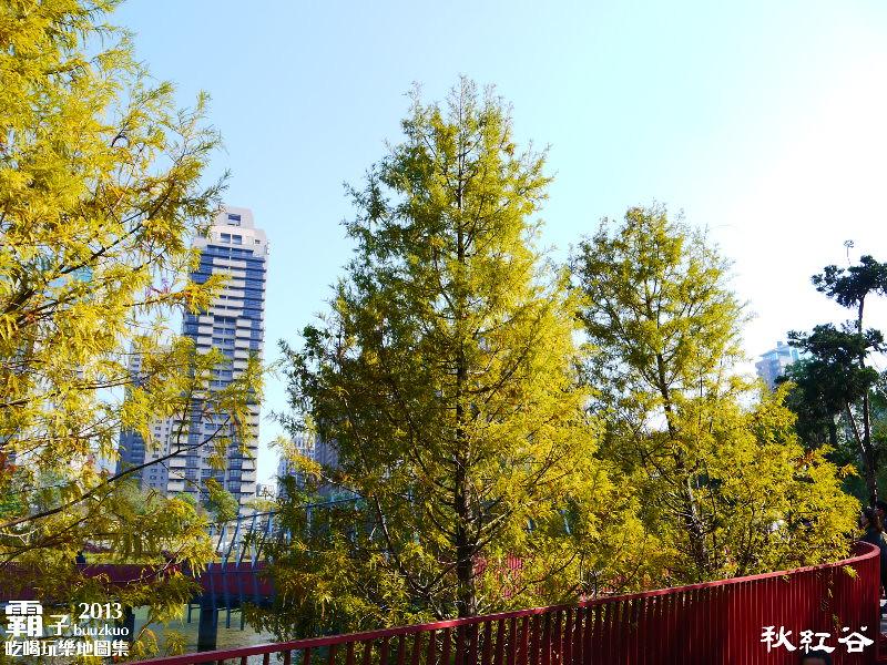 11268139094 3e01fcb73b b - 秋紅谷廣場,獨特的下凹式生態景觀公園,台中新一代的熱門景點。