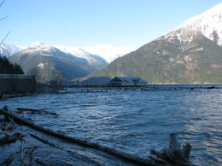 Bella Coola Estuary - 1