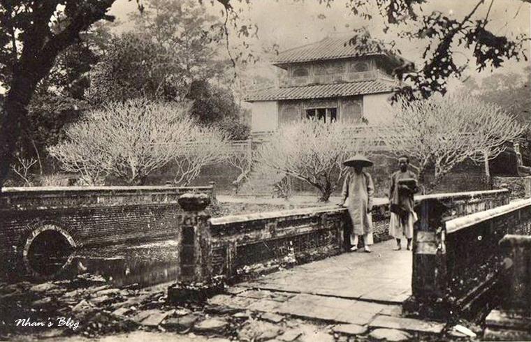 Lang Minh Mang (11)